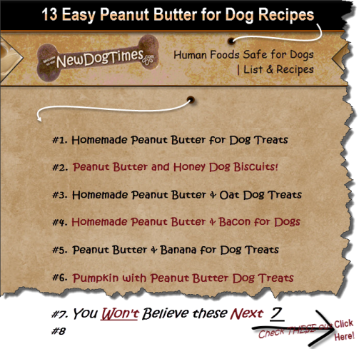 Human Foods Safe for Dogs |13 Peanut Butter for Dog Recipes