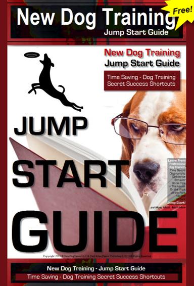Jump Start Your New Puppy Training Now- Save Time and Money. Pro Dog Training Secrets.