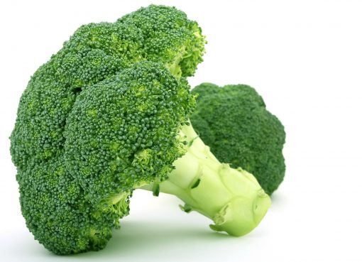 Human Foods Safe for Dogs - Broccoli for Dogs