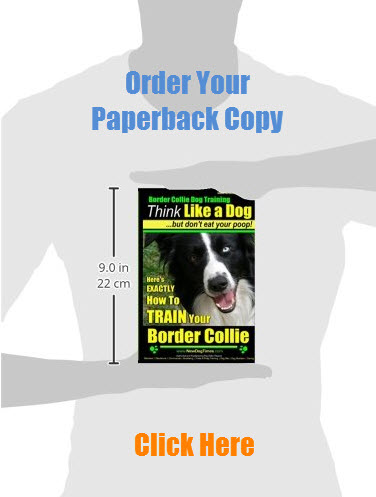 Border Collie Training Guide in {Paperback) Order Now!
