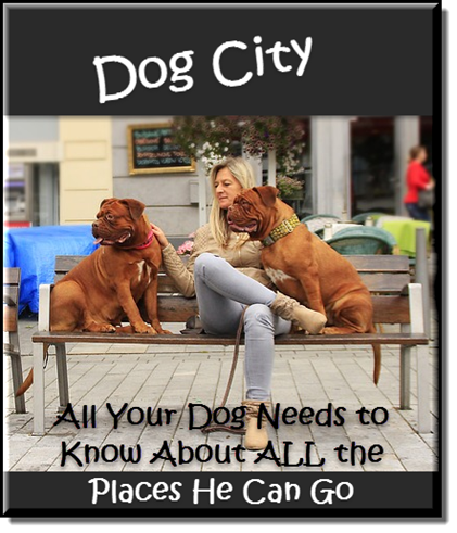 Dog City - Where to Go - What to Do - RUFF!