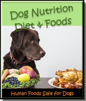 Dog Nutrition & Human Foods Safe for Dogs