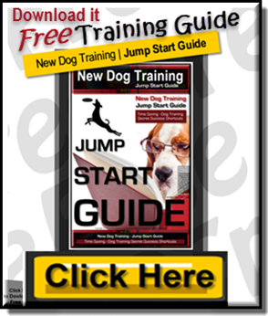 Free Dog Training Jump Start Guide