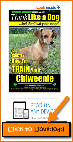 Chiweenie Training Book