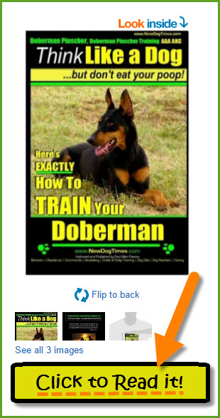Doberman Pinscher Training Paperback Book