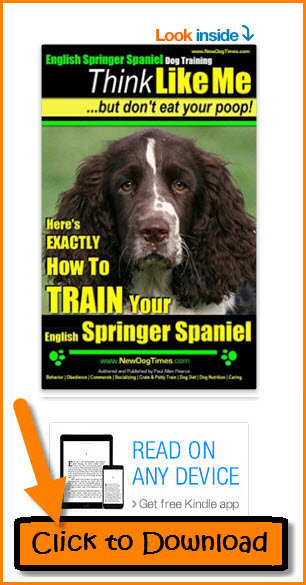 English Springer Spaniel Training eBook