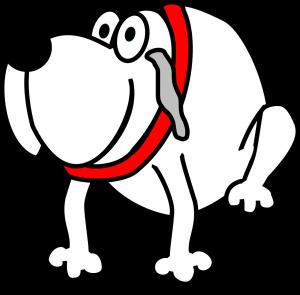Collars for Dog Training