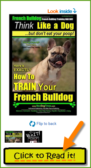 French Bulldog Training Paperback Book