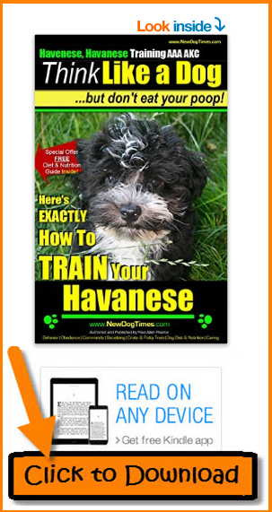 Havanese Training eBook