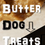 13 Easy Peanut Butter for Dog Treat Recipes and More!