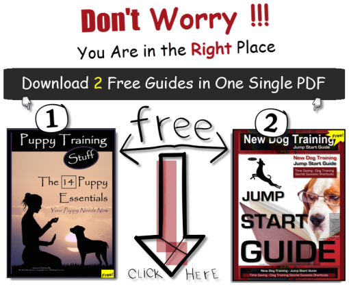 14 Essentials Jump Start Guide