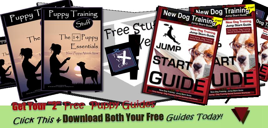 2 Free Guides Yeah!